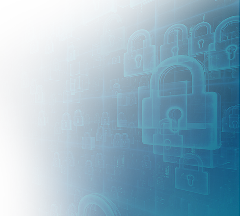 Privacy and Security Principles